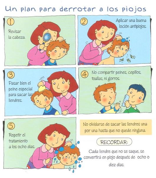 lo_que_debes_saber_sobre_pediculosis_7